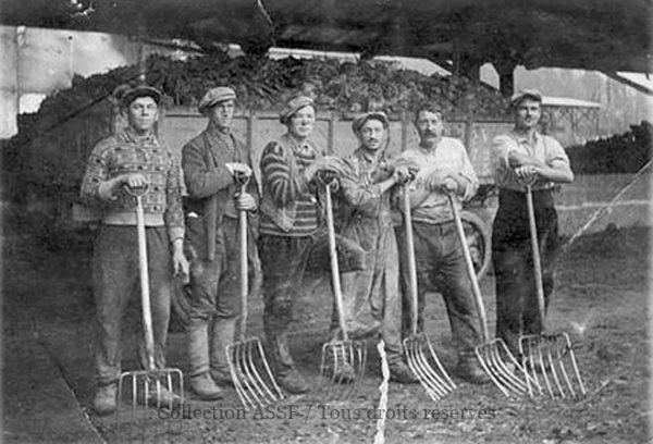 En général, la sucrerie employait des saisonniers pour décharcher ces remorques.